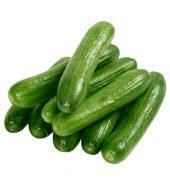 Cucumber Farmi– کھیرا فارمی